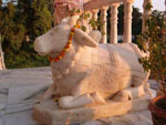 Lord Shiva's Faithful Servant, Nandi