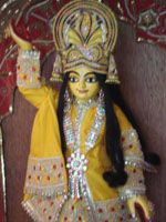Sriman Mahaprabhu at the Krishna Shakti Ashram